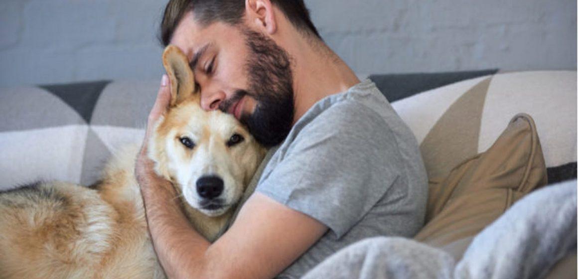 Diez minutos de caricias a tu mascota ayuda a que no estés estresado