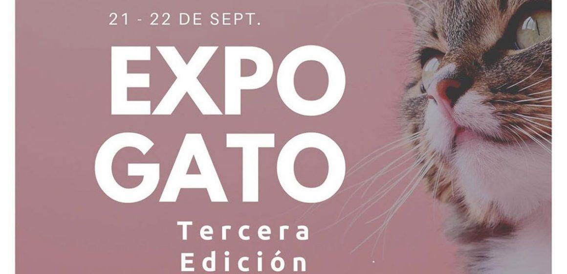 ExpoGato se realizará en Lima en septiembre