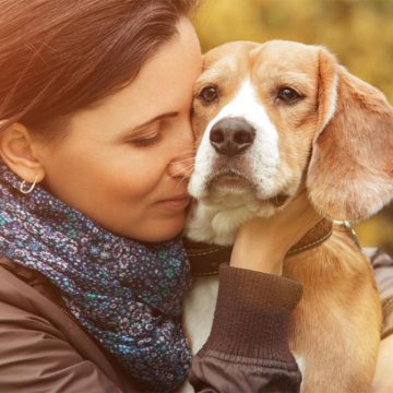 Un perro en casa, elemento indispensable de un corazón sano
