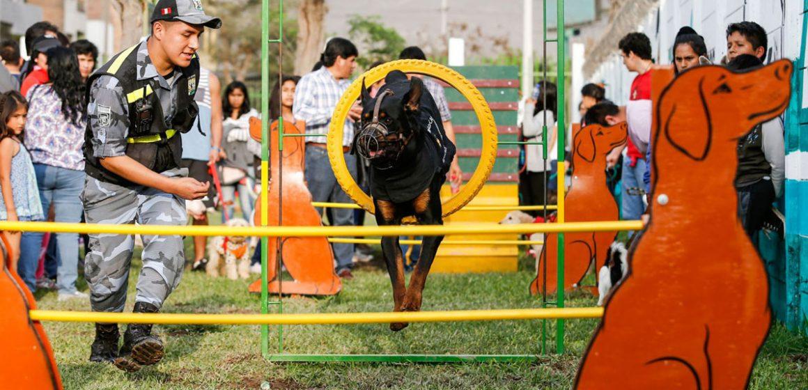 Once parques de Lima exclusivos para jugar con tu perro