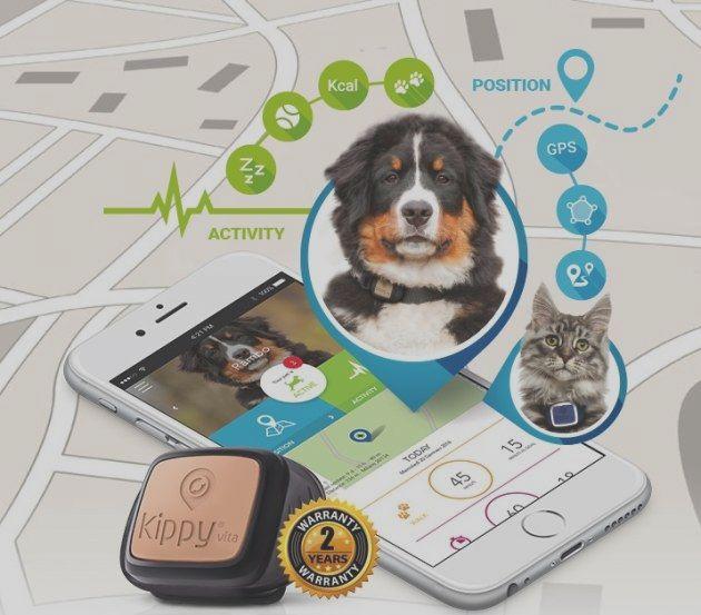 tecnologia para perros