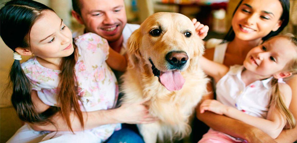 Las personas que hablan con sus mascotas son más inteligentes de manera social, asegura la ciencia