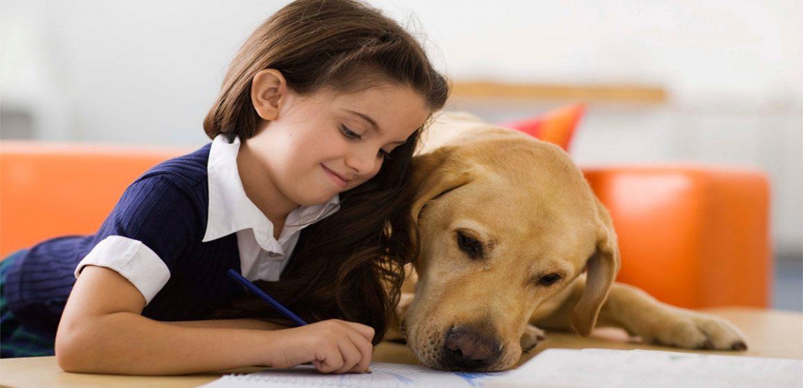 Crean asignatura escolar para cuidar a los animales