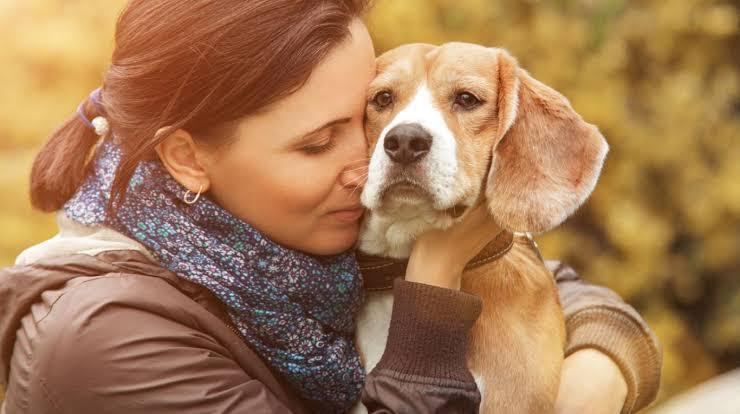 Estudio demuestra afecto de perros hacia sus dueños