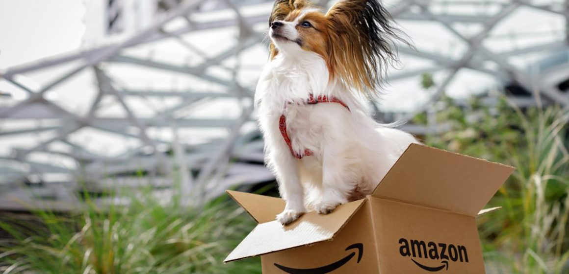 EE.UU: Amazon se vuelve Pet Friendly