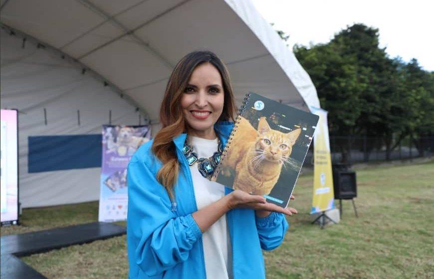 Lanzan campaña en contra del abandono animal en Colombia