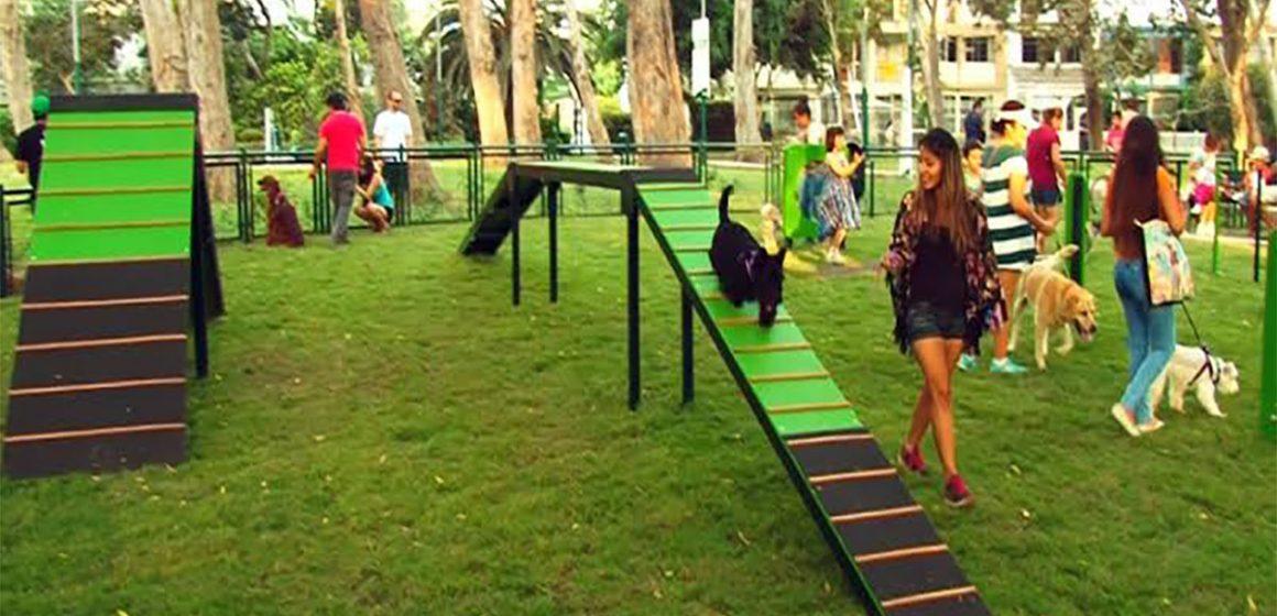 4 lugares de Lima para jugar con tu mascota