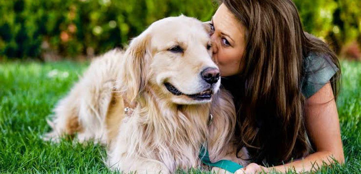 Estudio indica que los perros nos ven como sus padres