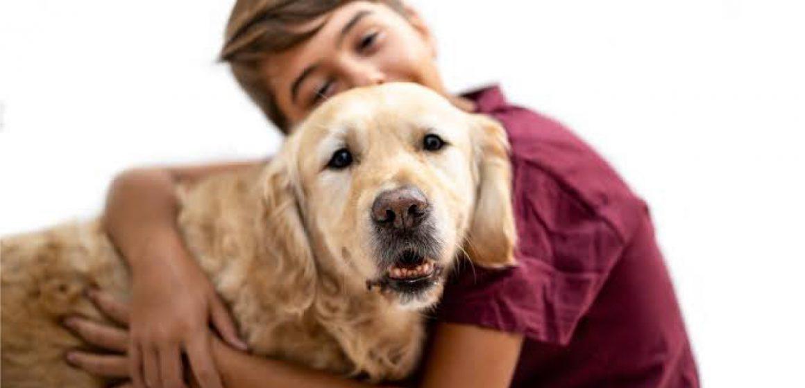 Centro de adopción animal abrirá en Jockey Plaza