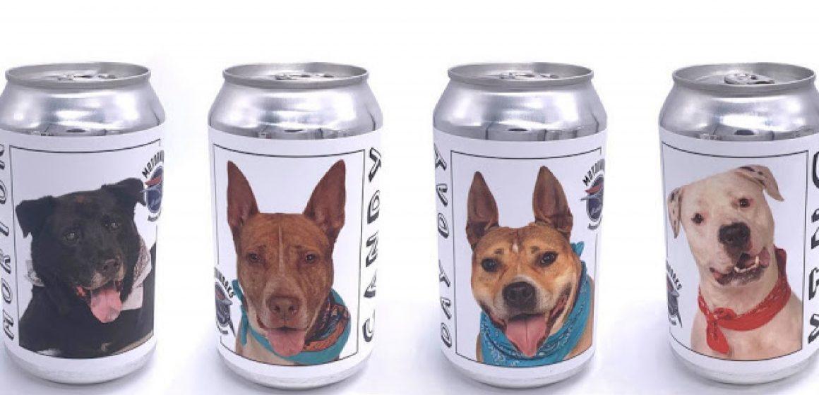 Empresa cervecera promueve la adopción de perros mediante sus cervezas