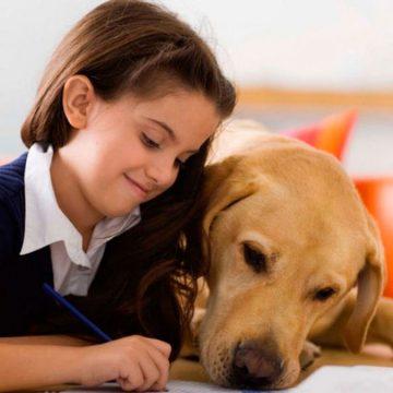 Colegio de España estrenó asignatura Protección Animal