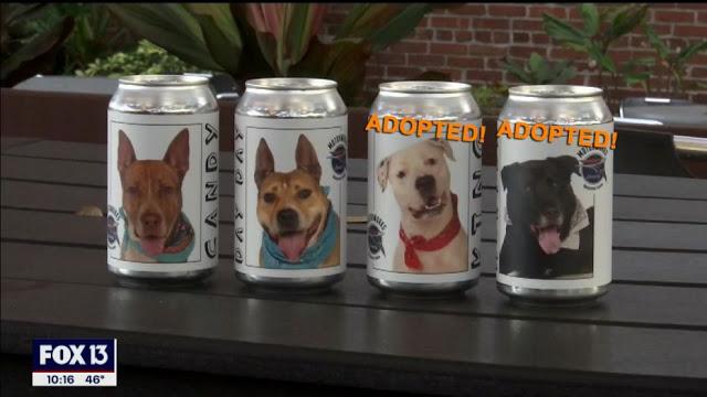 Encuentra a su perro perdido gracias a una lata de cerveza y su historia conmueve las redes