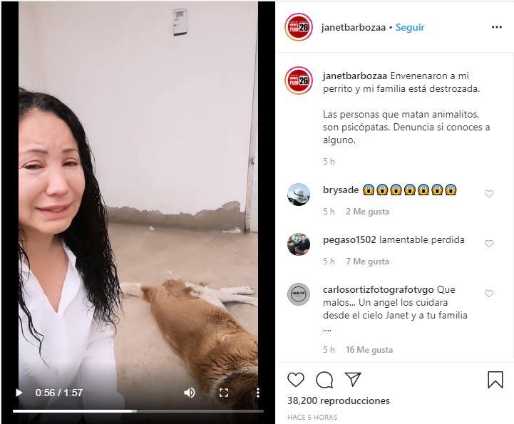 Janet Barboza denunció la muerte de su mascota por envenenamiento