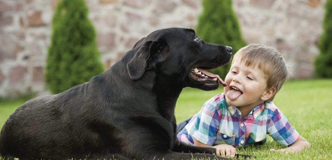 Beneficios de tener a una mascota cuando tenemos niños en casa