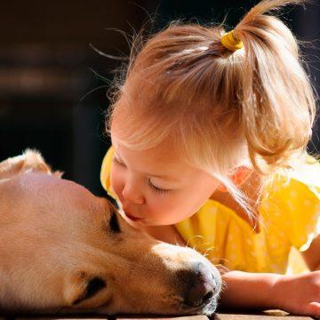 Tu cachorro puede ayudar a niños con déficit de atención
