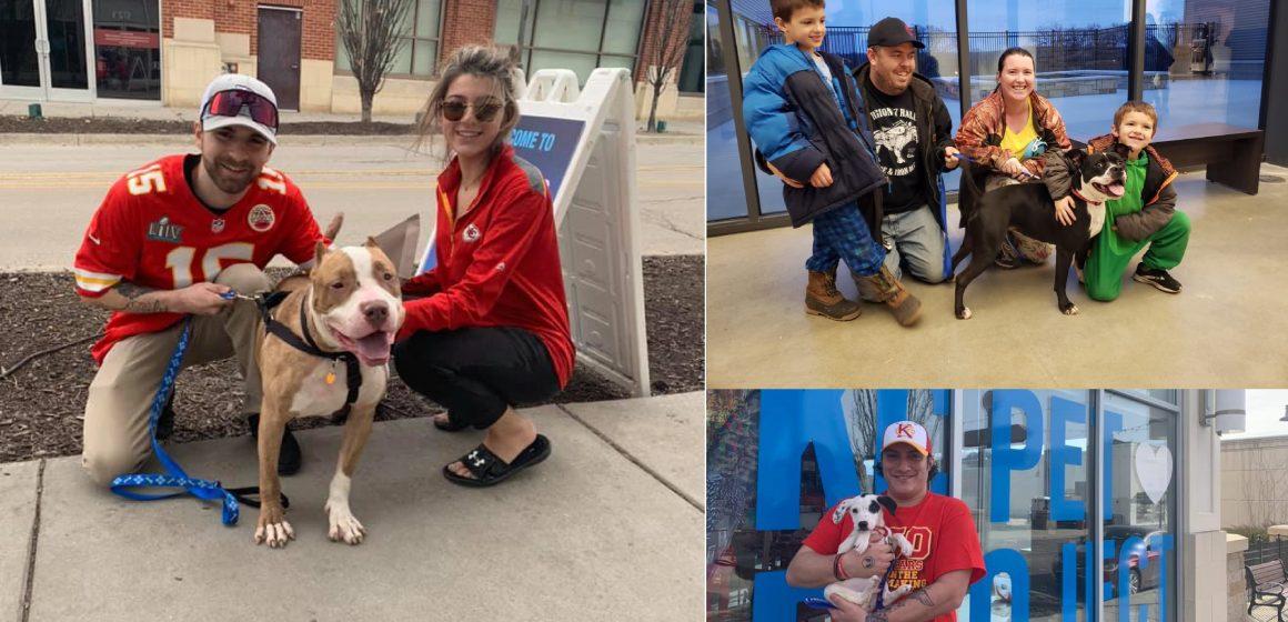 Campeón del Súper Bowl celebró título pagando cuota de adopción de 109 animales