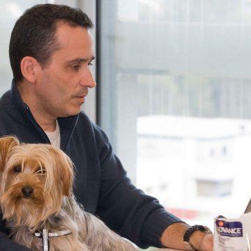 Llevar a nuestras mascotas al trabajo ayuda a reducir el estrés