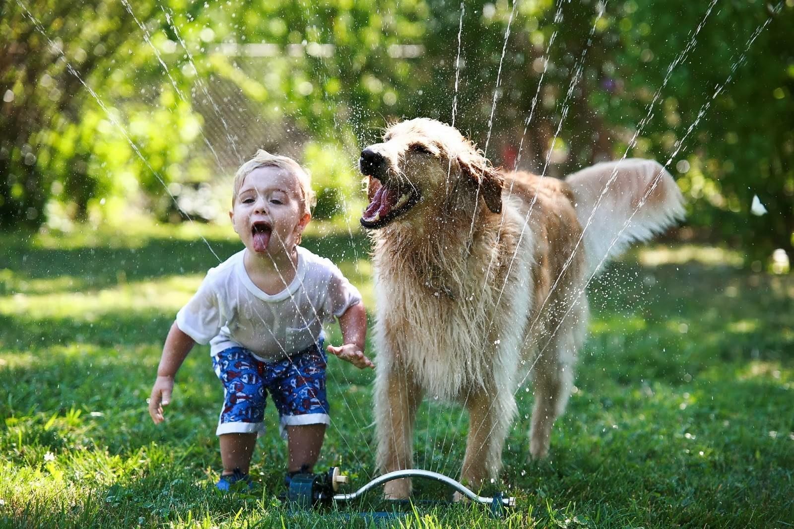 niños-y-perros