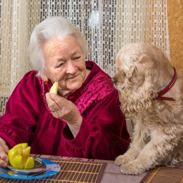 Beneficios de tener una mascota para adultos mayores