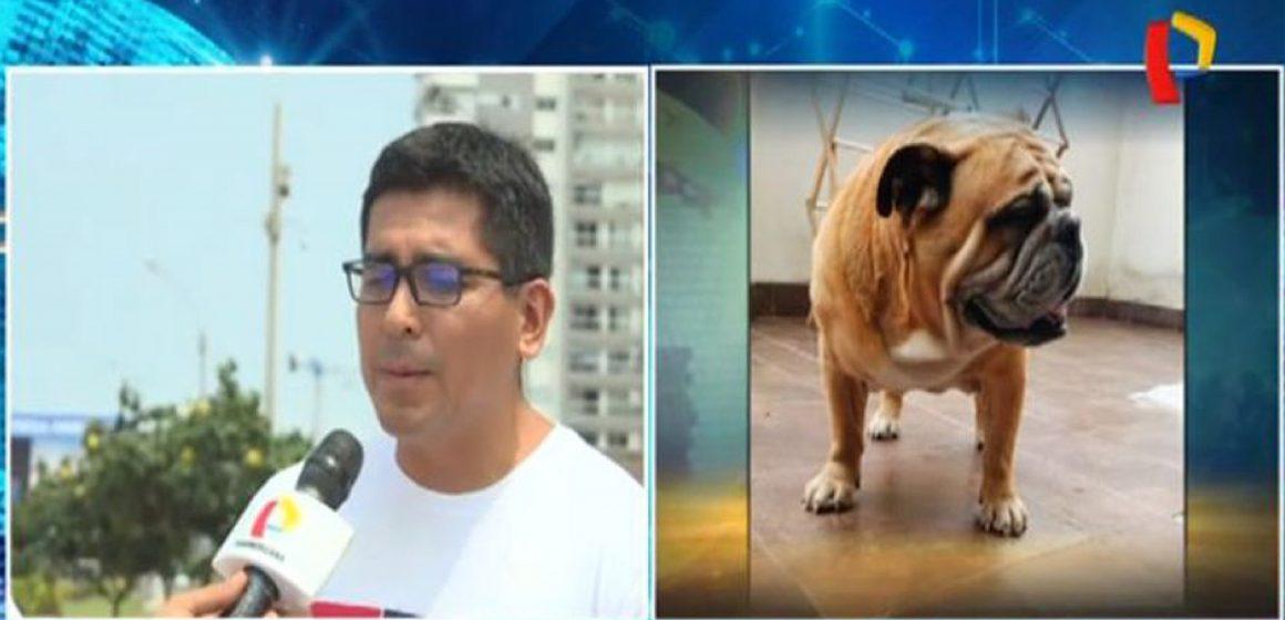 Triste final para perro en una veterinaria de San Miguel