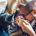 COVID-19: cómo afecta a los animales la cuarentena