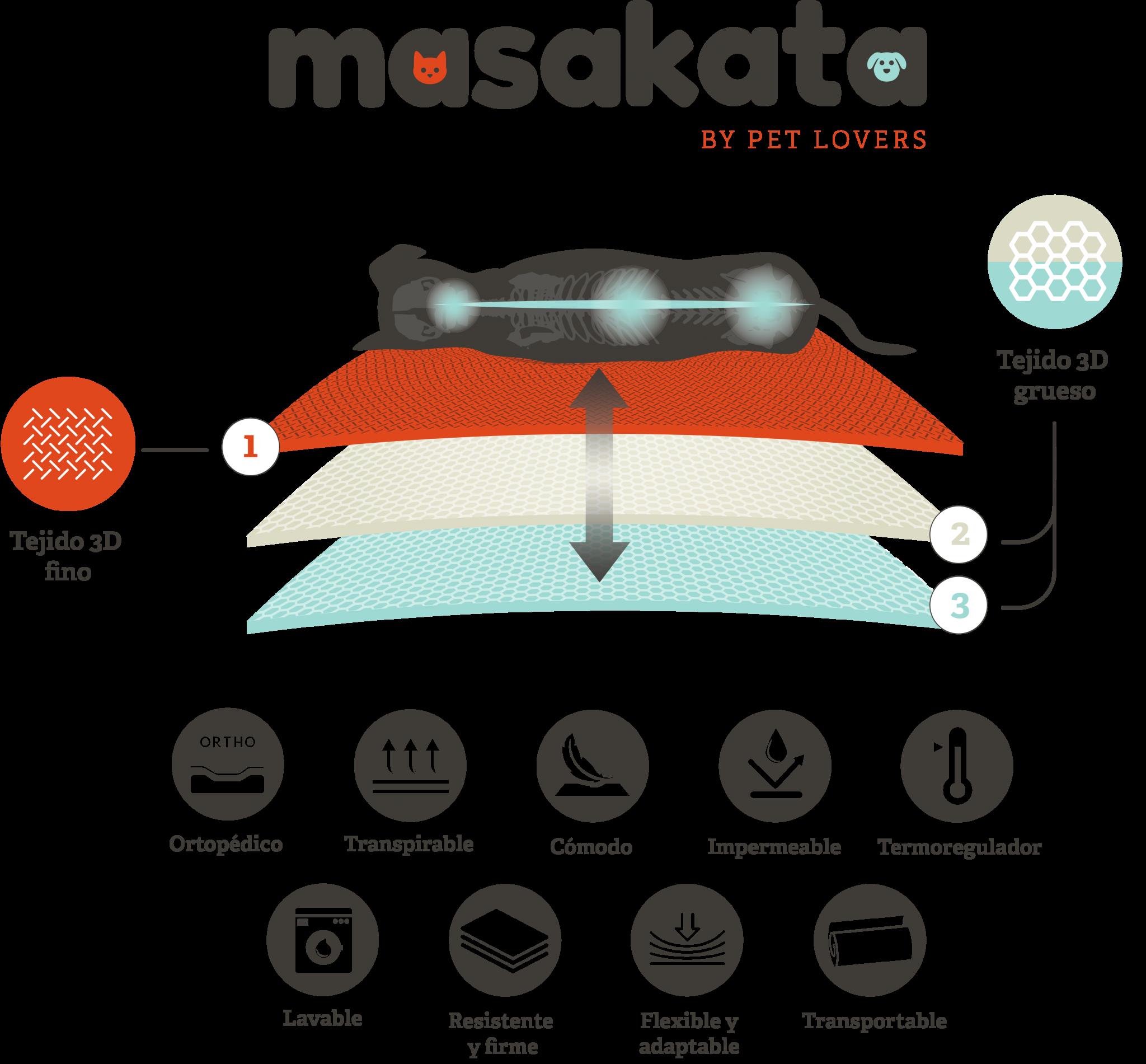 infografia-Masakata-03-2-2048x1901