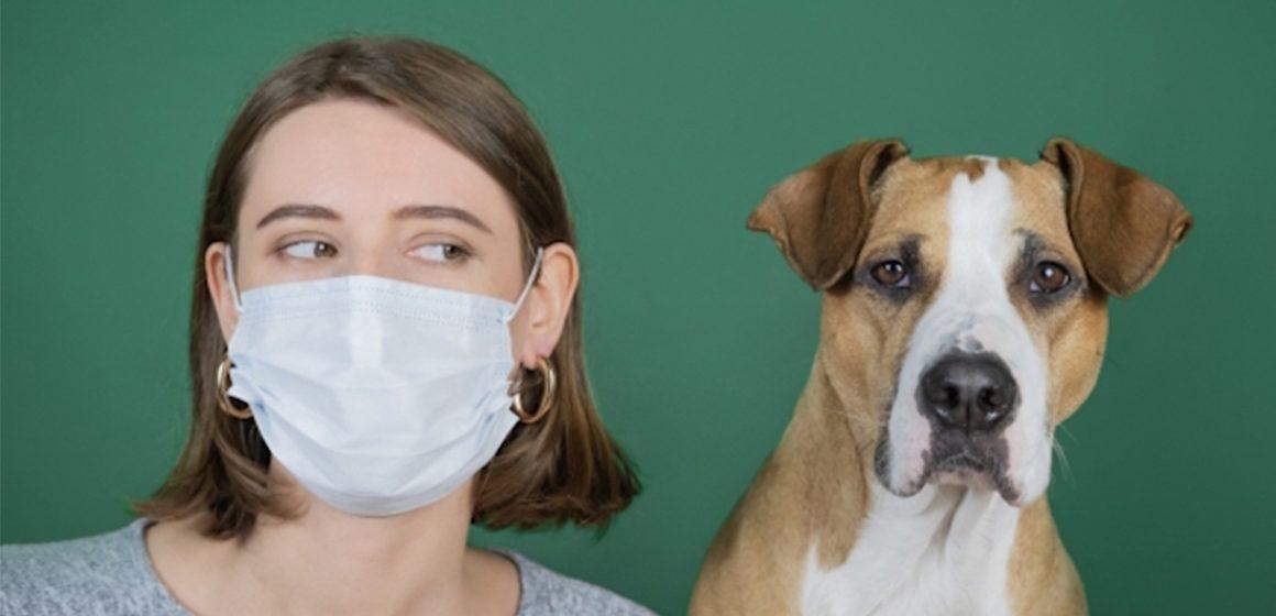 ¿#PetFriend qué sabes del COVID-19 y su repercusión en las mascotas?