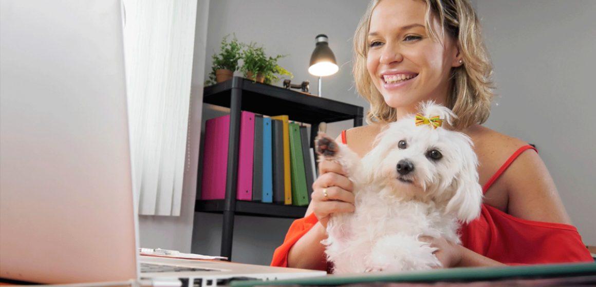 COVID-19: ¿Sabes cómo realizar consultas veterinarias a distancia durante la cuarentena?