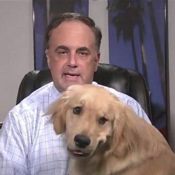 Viral: hombre del clima es interrumpido por su mascota en plena transmisión en vivo