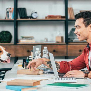 ¿Cómo trabajar en casa con nuestras mascotas?
