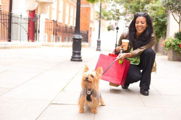 ¿Cuándo puedes sacar a tu perro cachorro de casa?