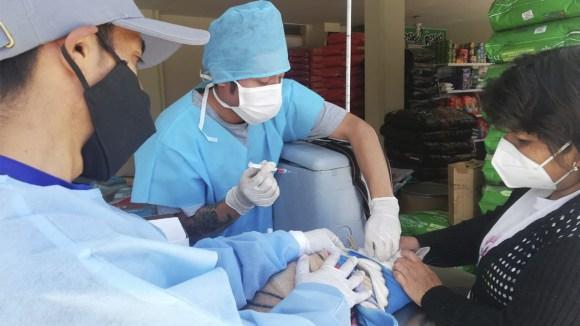 Jornada de vacunación canina en Cayma, Arequipa