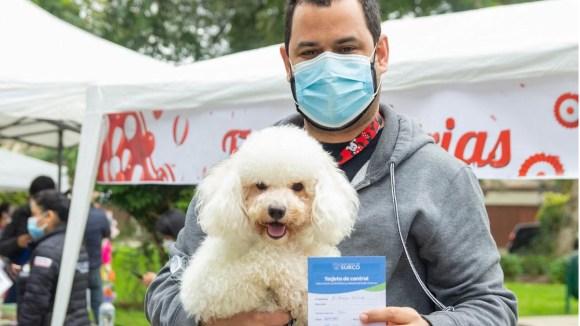 Municipio de Surco realiza vacunatón para perros y gatos